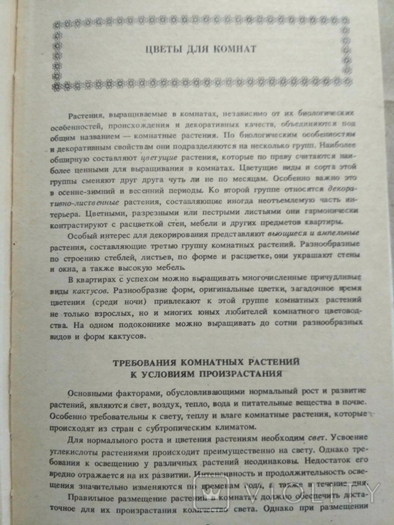 Комнатное цветоводство. Д. Ф. Юхимчук, фото №13