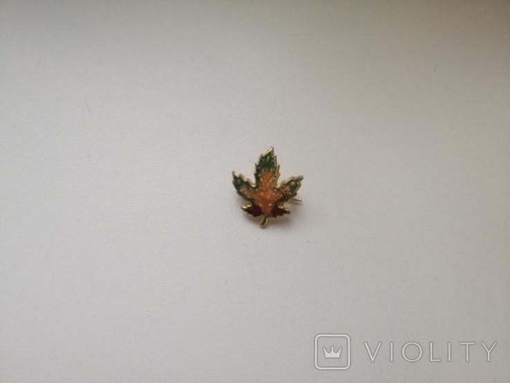 Брошь -малютка Кленовый листик. Винтаж. США. 50-е гг. (213814), фото №6