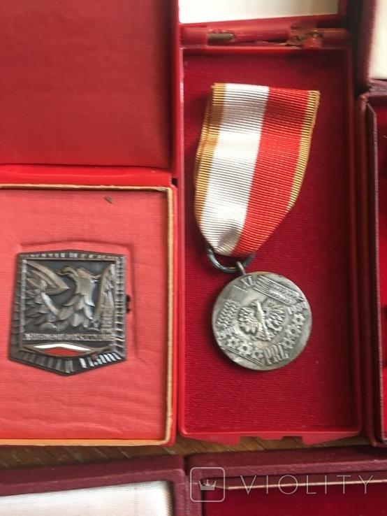 Комплект нагород з документами, фото №6
