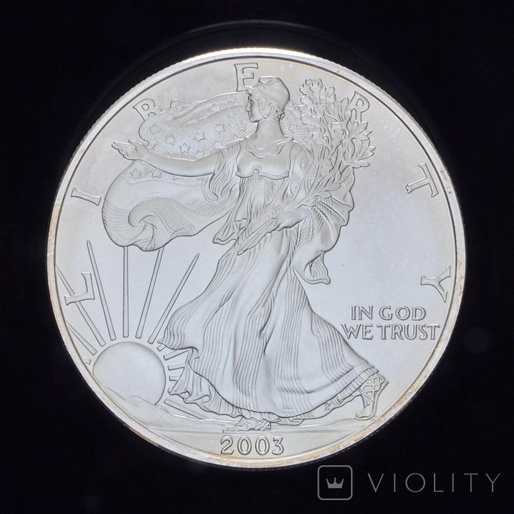 1 Доллар 2003 Шагающая Свобода 1oz, США Унция, фото №2