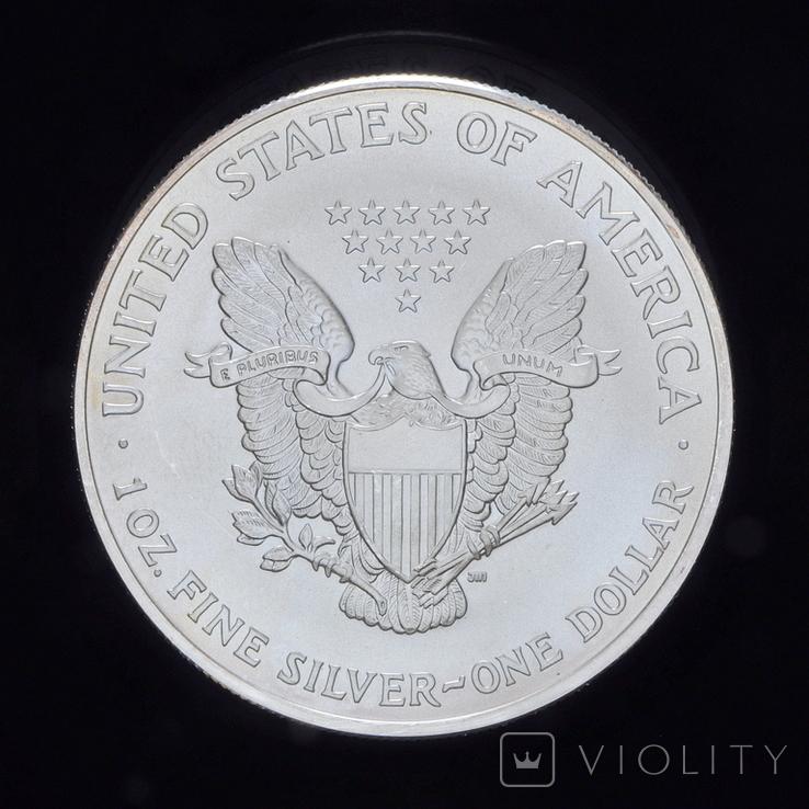 1 Доллар 2003 Шагающая Свобода 1oz, США Унция, фото №3