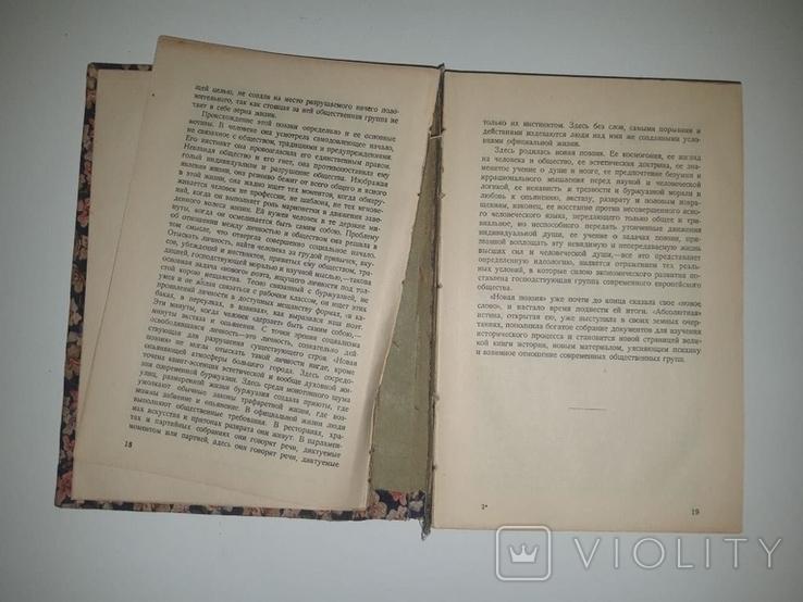 П. Коган. Очерки по истории западно-европейской литературы. 1928, фото №5