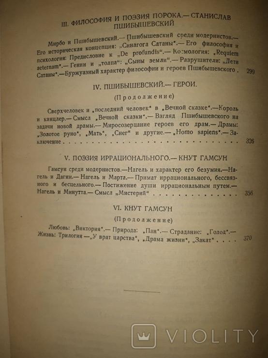 П. Коган. Очерки по истории западно-европейской литературы. 1928, фото №8
