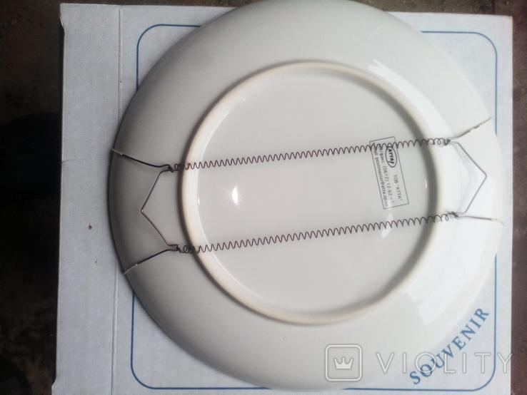 Сувенирная тарелка настеная ПМР город Рыбница, фото №4