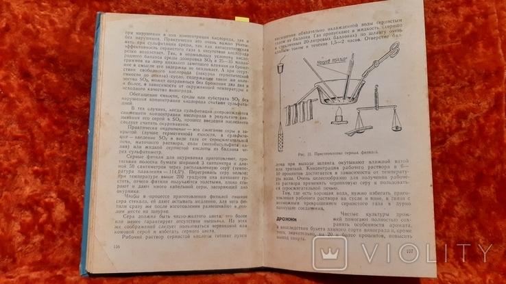 Качество Переработка  Хранения Винограда (1147), фото №5