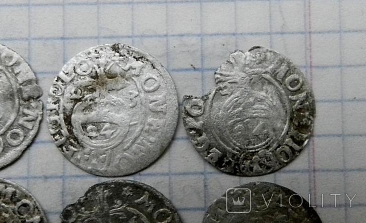 Полтораки Сигизмунда 3 ( 6 шт.), фото №4