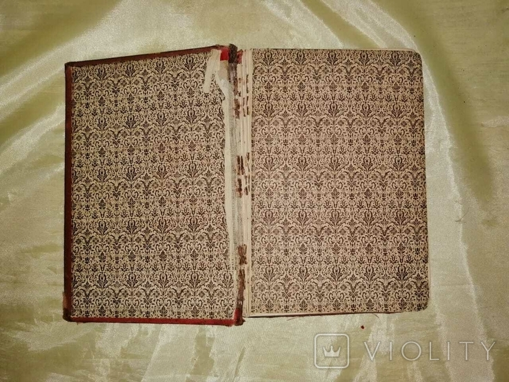 Старая немецкая книга 1884г., фото №10