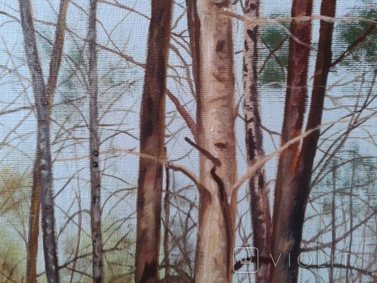 В весеннем лесу, х., м., 50х70 см. Алек Гросс, фото №3