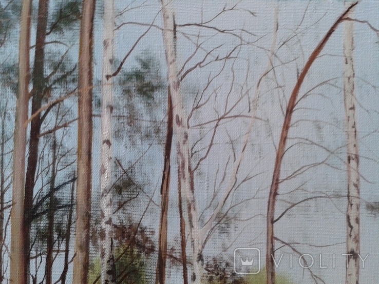 В весеннем лесу, х., м., 50х70 см. Алек Гросс, фото №6