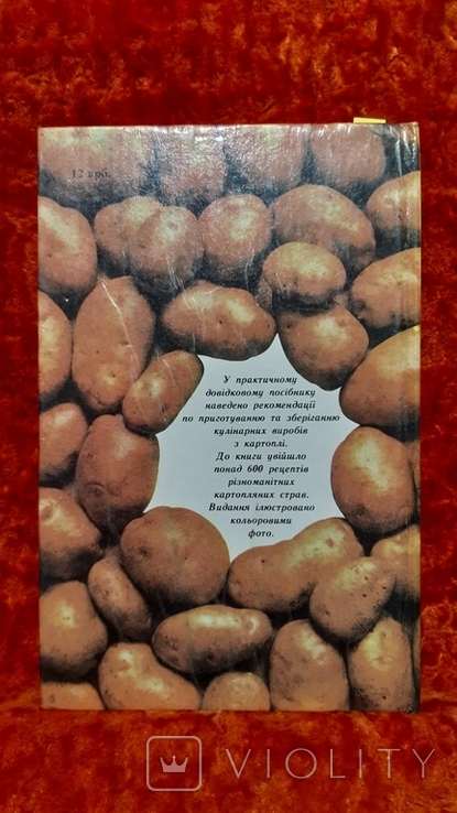Страви  з Картоплі (1159), фото №6