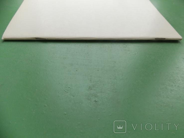 """1904 г. """"Руководство по собиранию старинных ....русских монет"""" Репринт, фото №4"""