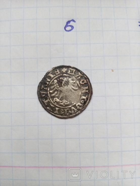 Литовський полугрош Сигизмунда старого без дати (6), фото №3