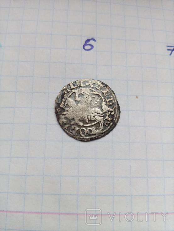 Литовський полугрош Сигизмунда старого без дати (6), фото №2