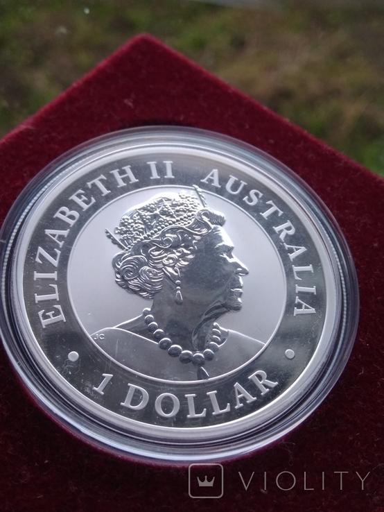 Австралия 1 доллар 2020 г. Лошадь Брамби Брумби (серебро 999 пробы, 1 унция) Конь, фото №3