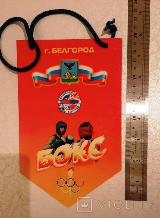 Спортивные медали (4 шт)+бонус (вымпелы), фото №10