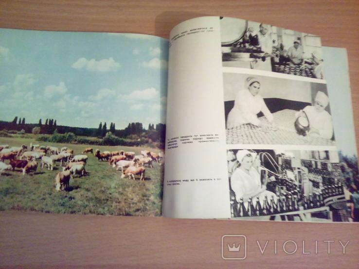 Миргород, фотоальбом, изд. Мистецтво  1968, фото №6