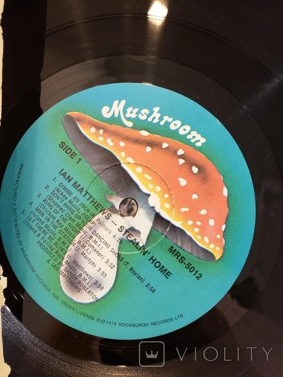 """Vinyl. Rock, Pop, Folk. """"Ian Matthew* – Stealin' Home"""", фото №5"""