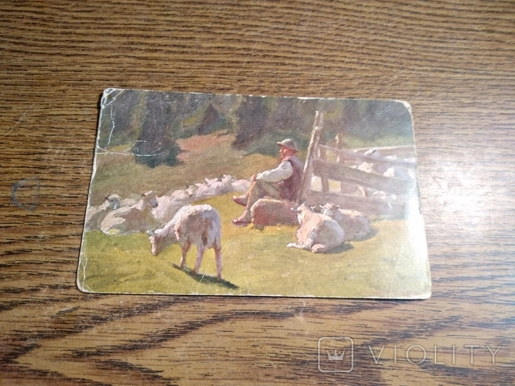 Пастух, фото №8