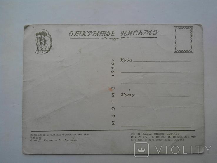 Всесоюзная сельскохозяйственная выставка. ИЗОГИЗ 1954 г., фото №10
