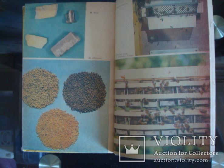 Пчеловодство,справочное пособие, фото №8