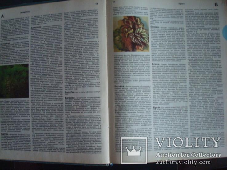 Краткая энциклопедия домашнего хозяйства 1987г., фото №6