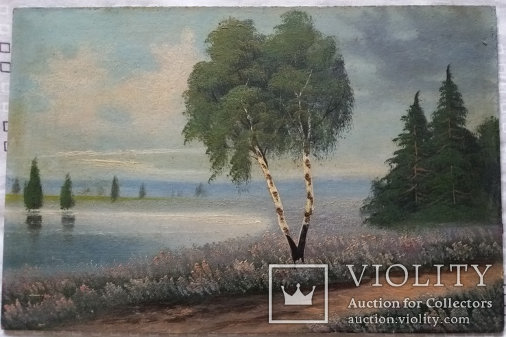 Картина 1917р.,  20х30 см, картон, олія, фото №2