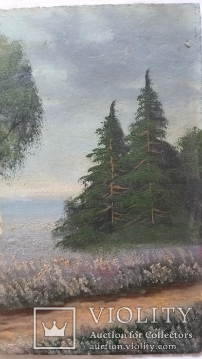 Картина 1917р.,  20х30 см, картон, олія, фото №5