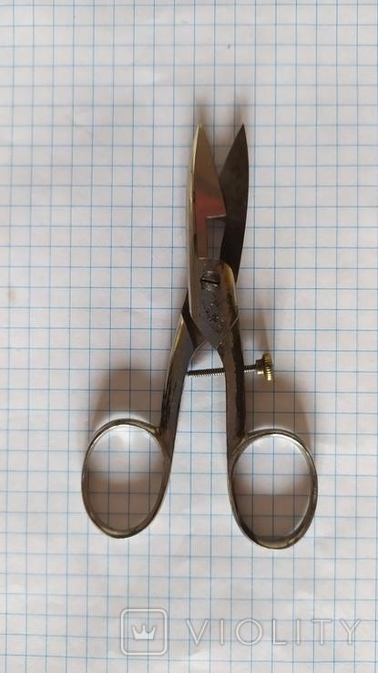 Ножницы Solingen Данциг, фото №2