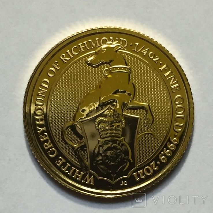 Золотая монета Великобритании Белая борзая 2021 г.1/4 OZ(7,78 гр.), фото №5