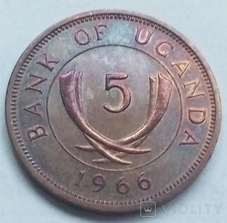5 центов 1966 г. Уганда, фото №2