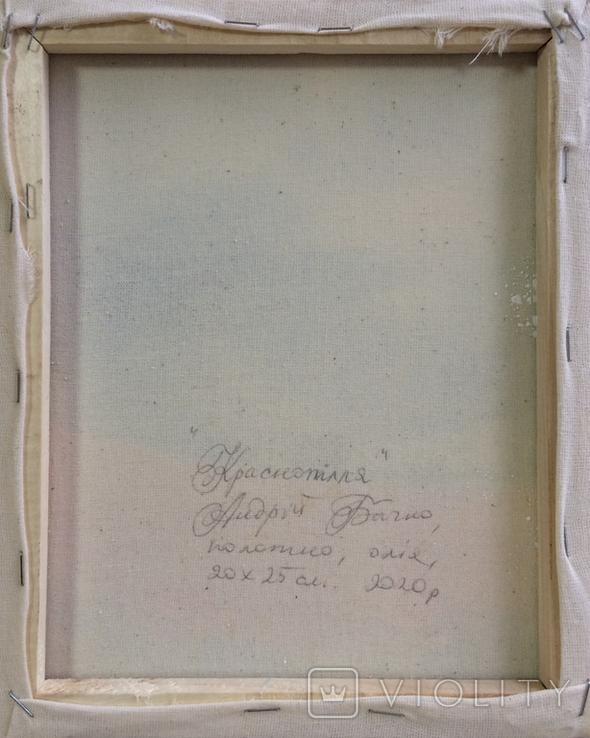 Картина, Краснопілля, 25х20 см. Живопис на полотні, фото №6
