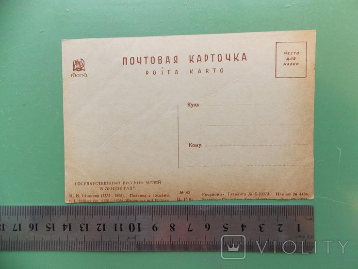 """1933 г.   Шишкин   """"Полянка с соснами""""., фото №3"""