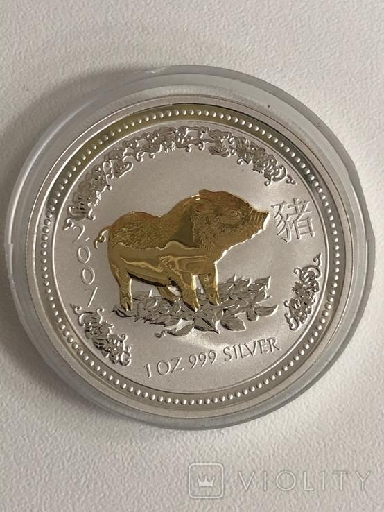 1 доллар 2007 Австралия,год Свиньи, фото №12