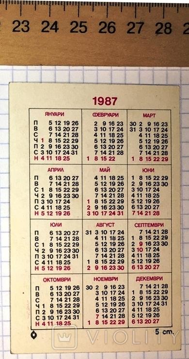 Календарик цветущий кактус, Болгария, 1987 / квітка, фото №4