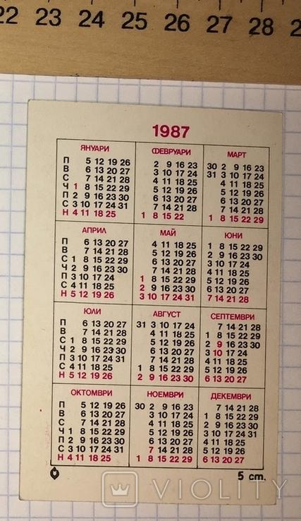 Календарик цветущий кактус, Болгария, 1987 / квітка, фото №5