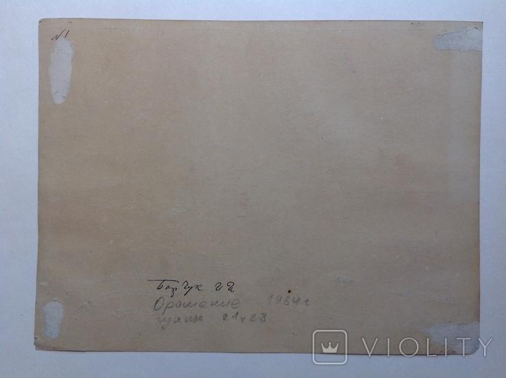 1964  Пейзаж. Орошение. Барчук И.И. 21,5х29, фото №8
