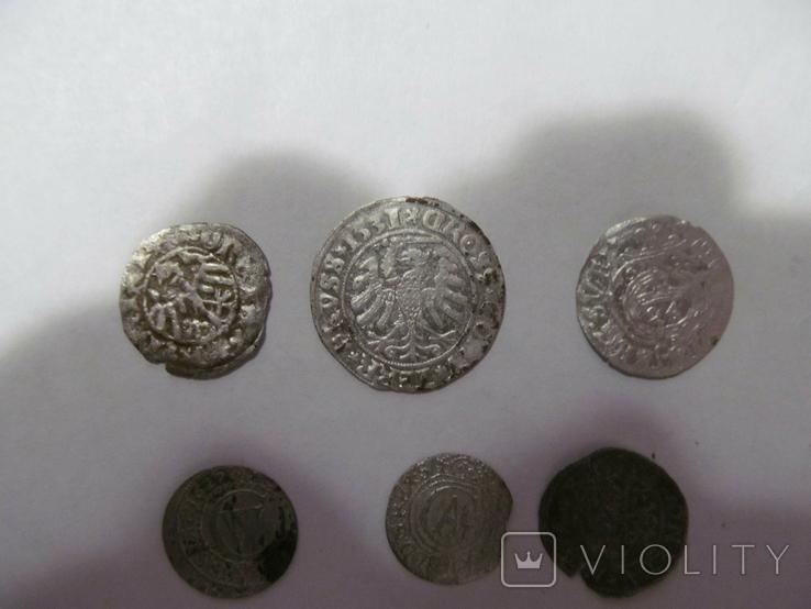 Півгріш Казимира, грош Сігізмунда-1, та бонус, фото №3