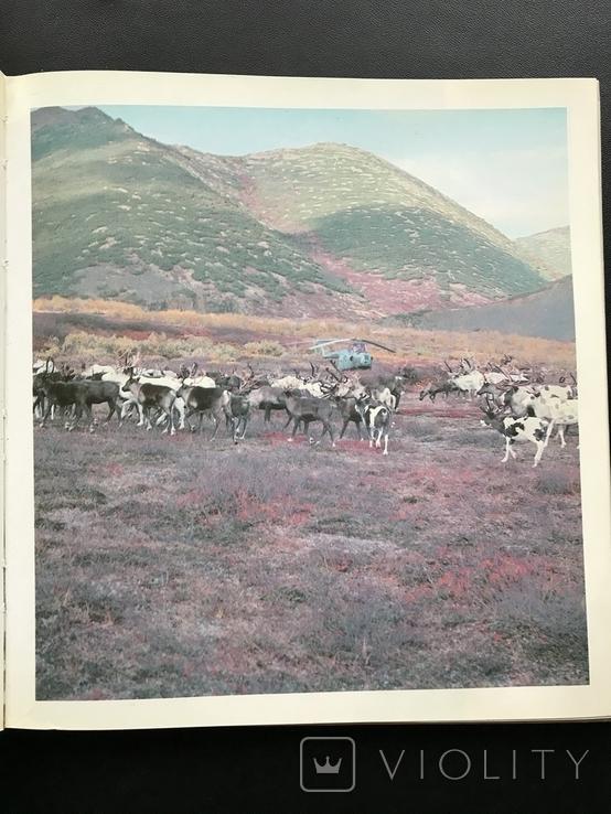 1983 Северные зори. СССР Корякский АО, фото №7