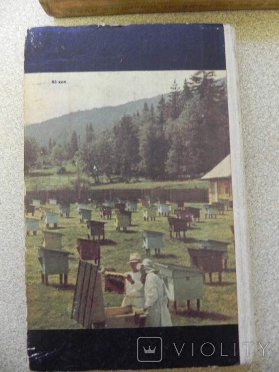 Пасіка,бджоли,мед 1974 г., фото №10