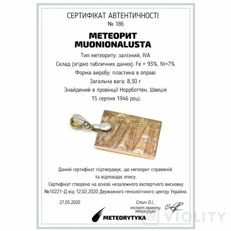Кулон з метеорита Muonionalusta із срібною фурнітурою, сертифікат автентичності, фото №3