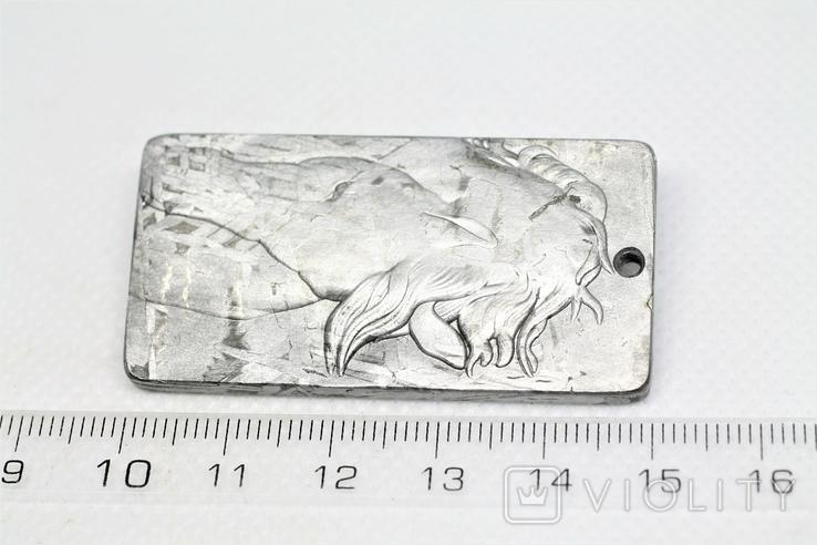 """Кулон """"Зодіак Кінь"""" з  метеорита Aletai, 40,9 грам, із сертифікатом автентичності, фото №4"""