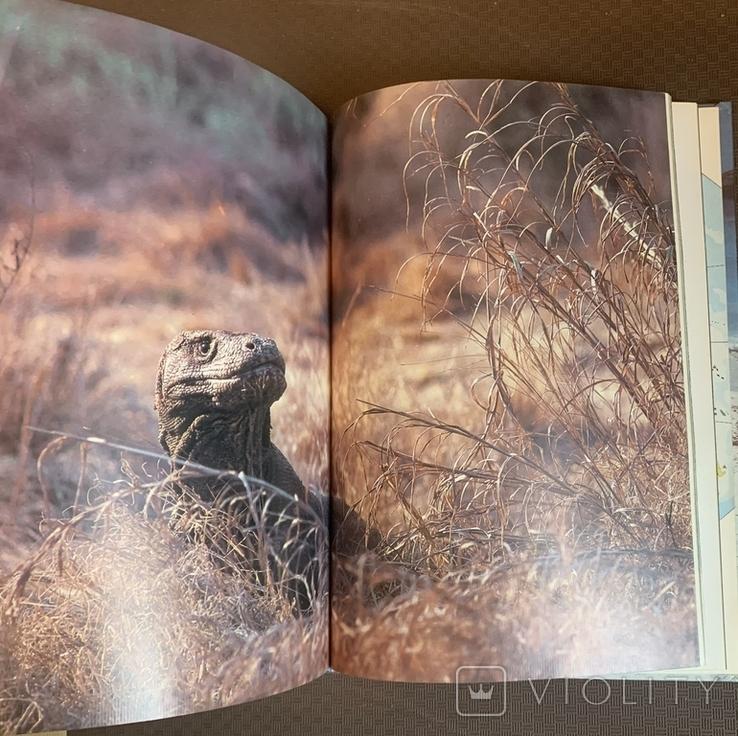 Девід Етенборо - Жива Планета 1988р., фото №5