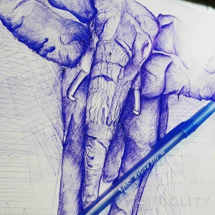 Слон. Африка, фото №3