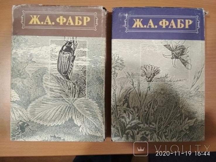 """Ж.А.Фабр""""Нравы насекомых"""",2 тома, фото №4"""