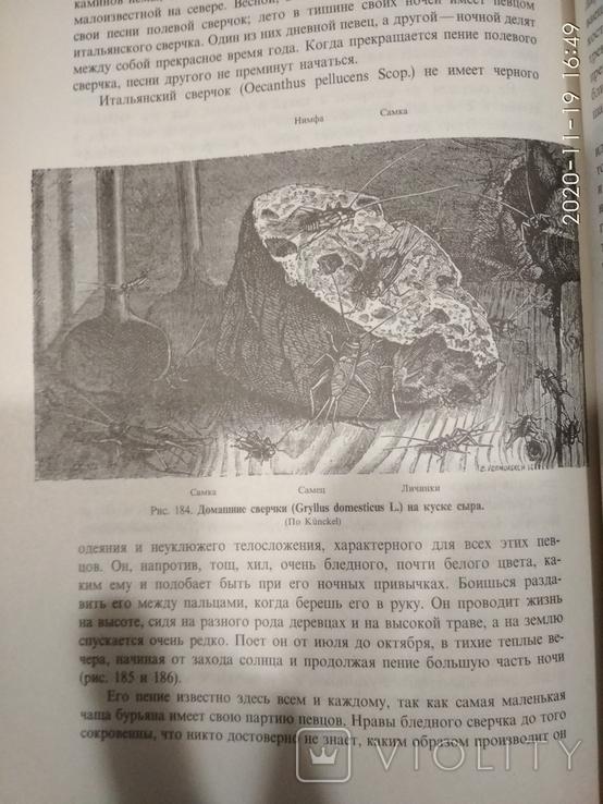 """Ж.А.Фабр""""Нравы насекомых"""",2 тома, фото №13"""