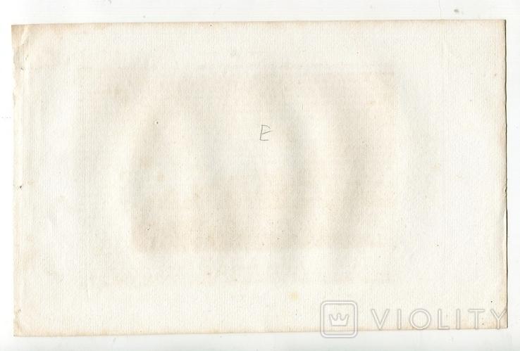 Старинная гравюра. 1834. Англия. Итон Холл, Чешир. 27х17см, фото №9