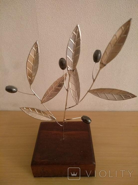 Оливковое дерево, фото №2