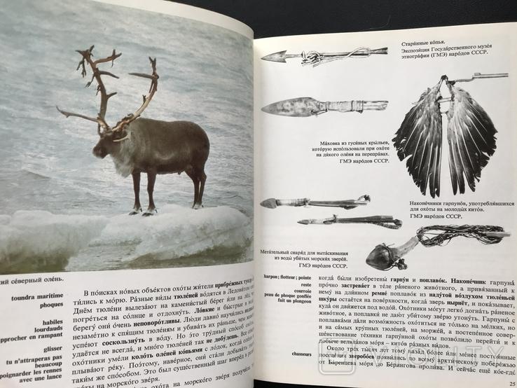 1984 У берегов Ледовитого океана. Рассказы о народах СССР, фото №5