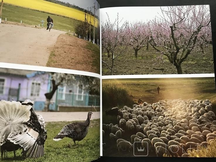 2017 Киев. Бессарабия. Одесская область. Рецепты Кулинария, фото №7