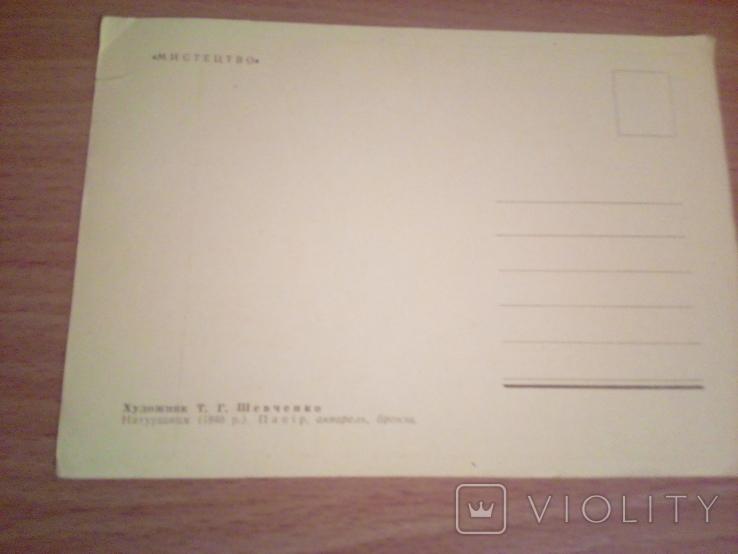 Худ.Т. Шевченко, Натурщиця,  изд, Мистецтво, фото №4